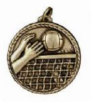 Volleyball 251 Medal
